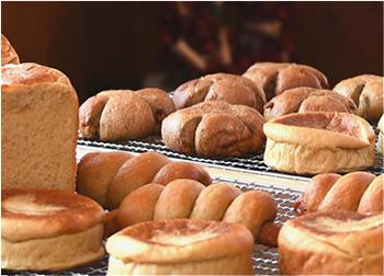 金澤MOYU工房 糖質制限パン