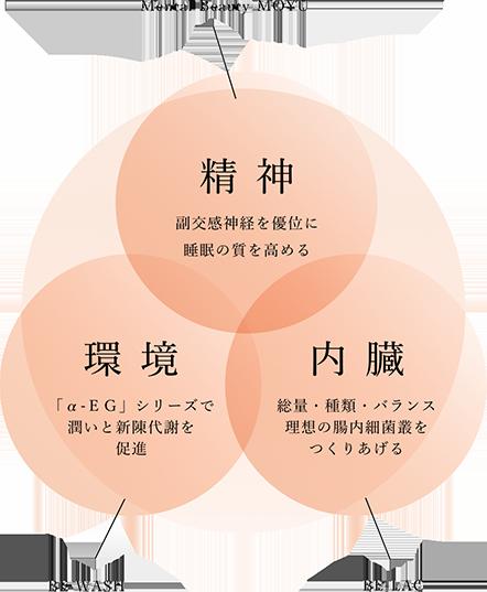 トータルケアの3つの柱、精神・環境・内臓